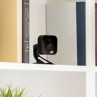 Newburgh indoor security camera